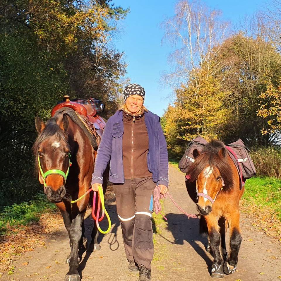 Wanderung mit Packpferden und Ponys
